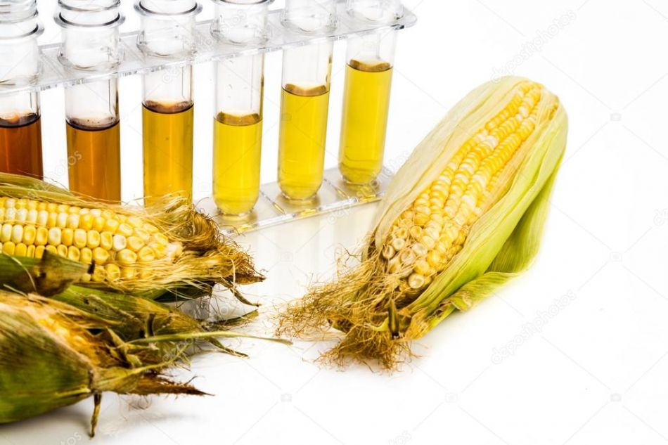 Etanol de milho deve render 400milhoes em ICMS