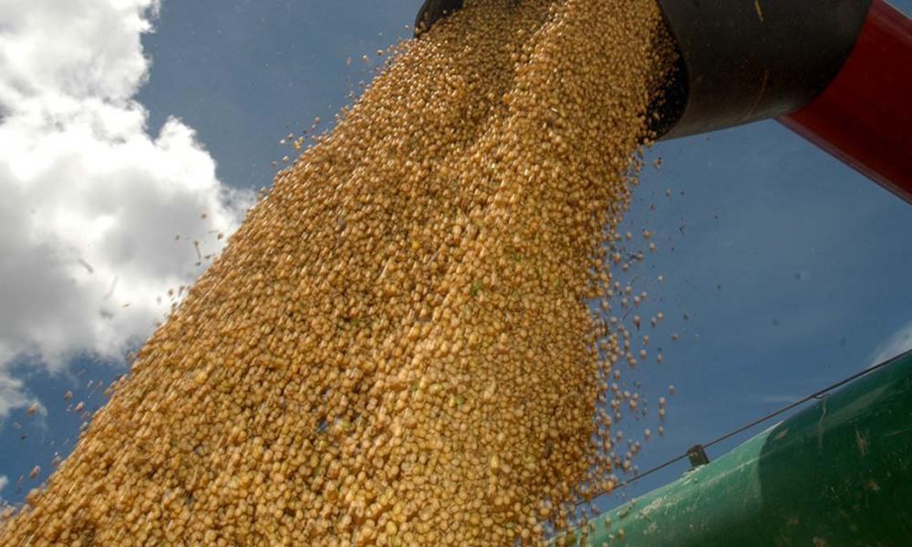 Clima ruim nos Estados Unidos faz preço da soja disparar na Bolsa